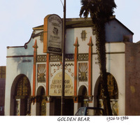 Golden_bear_2